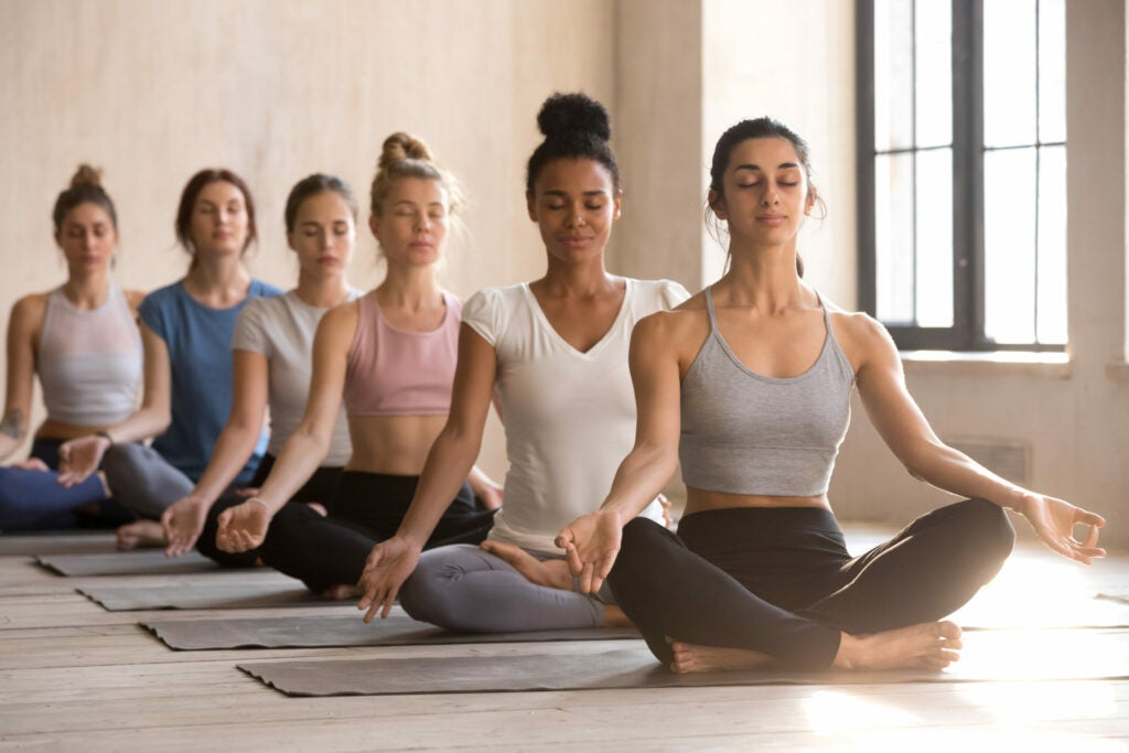 Six young women meditate sitting in lotus posture