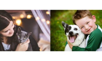 The 15 Most Amazing Stories of Lost Pets Who Returned Home