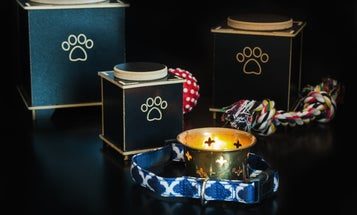 3 Urns for Dogs to Properly Memorialize Your Sweet Pup Who's Passed