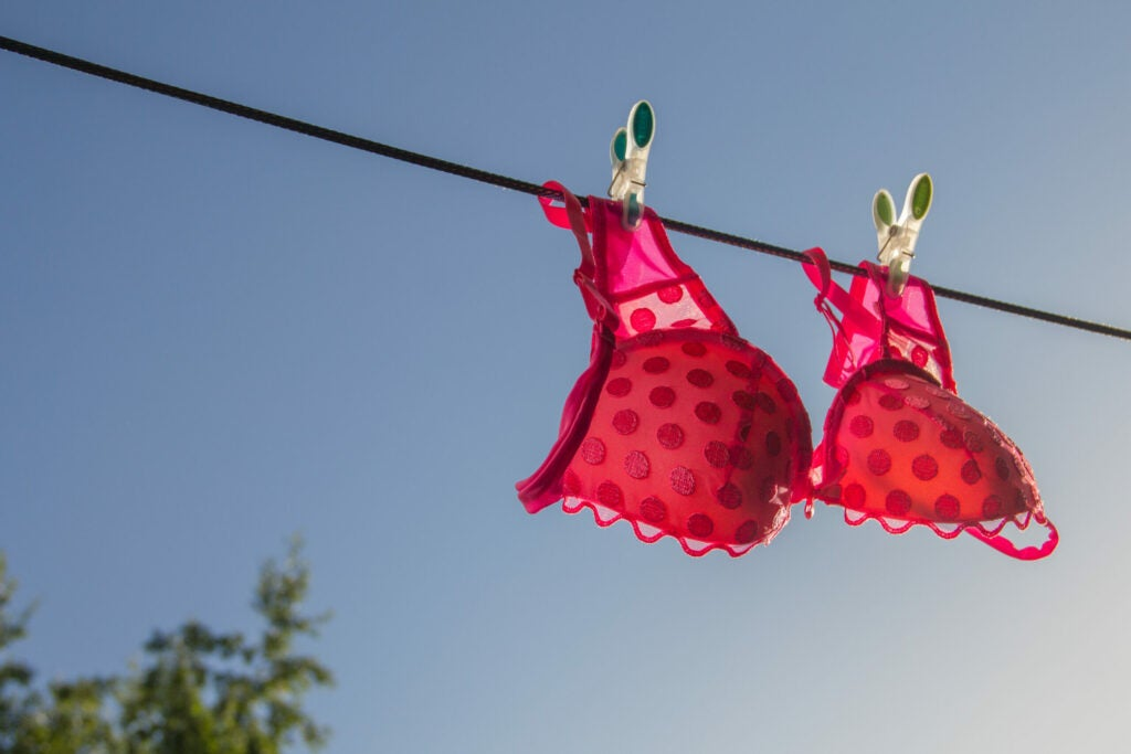 clothesline with a pink bra on the blue sky background