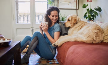 Clean Better: Everything You Need to Know Before Buying a Cordless Vacuum for Pet Hair