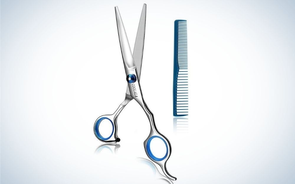 The COOLALA Stainless Steel Hair Cutting Scissors are the best value.