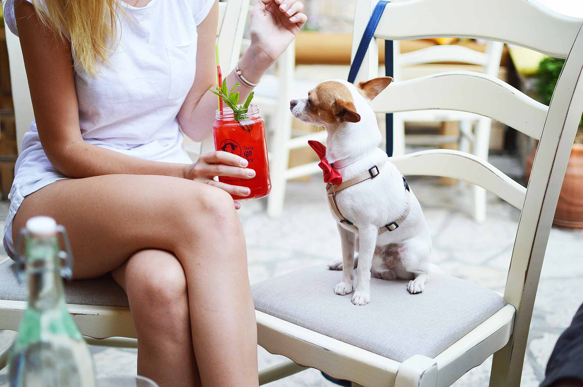 Woman holding a cocktail sitting beside a cute white and brown dog