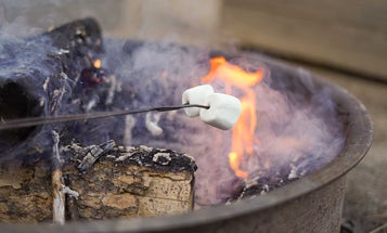 Affordable Wood-Burning Fire Pits for Your Backyard or Campground