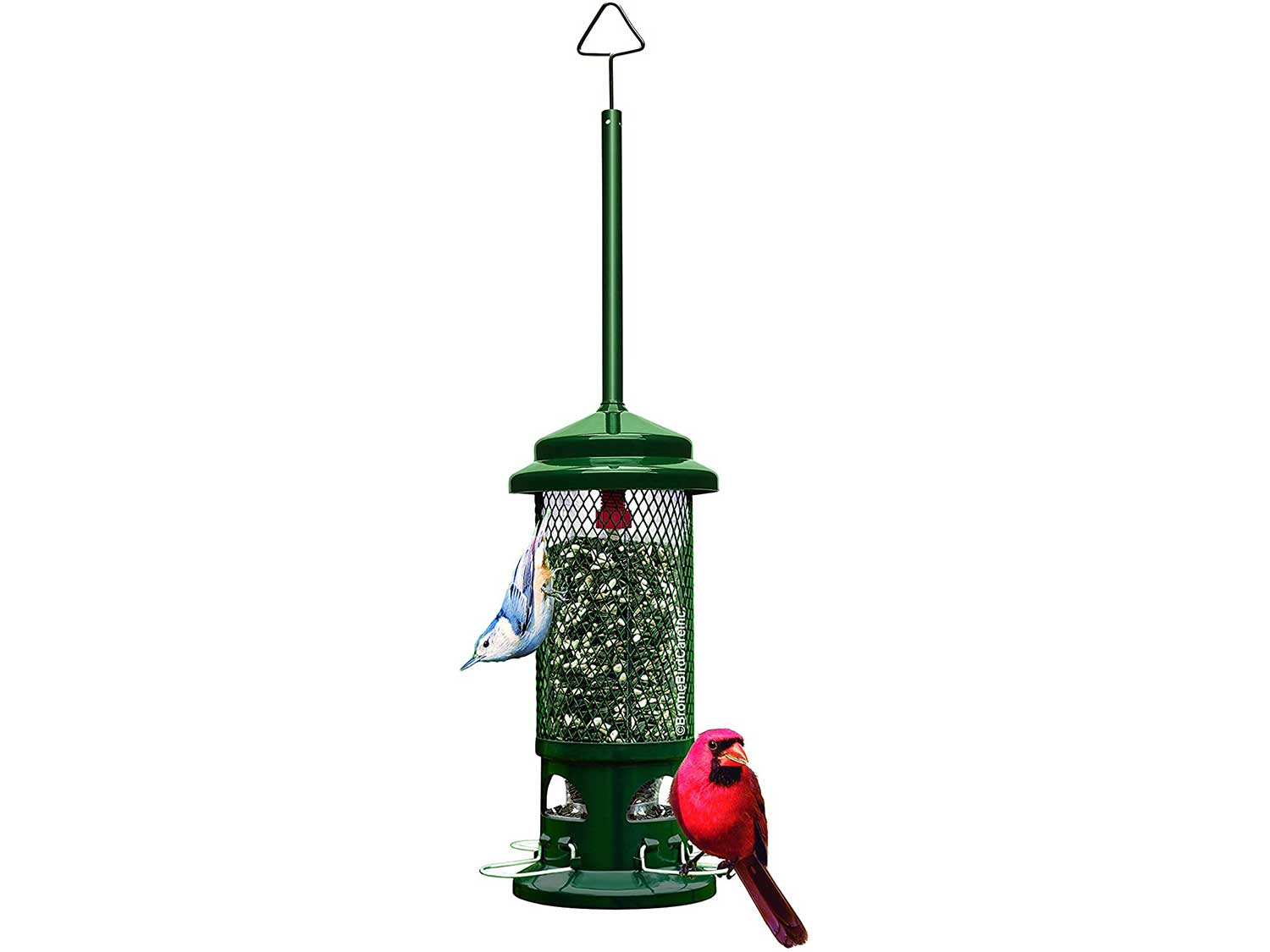 Squirrel Buster Standard Squirrel-proof Bird Feeder w/4 Metal Perches, 1.3-pound Seed Capacity