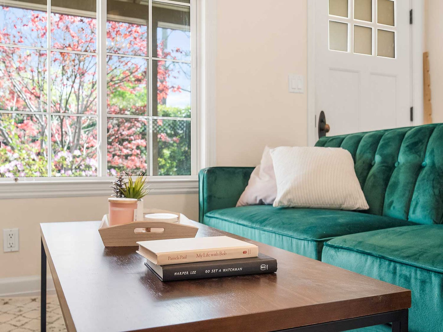Coffee table in living room with books and plant in front of couch.