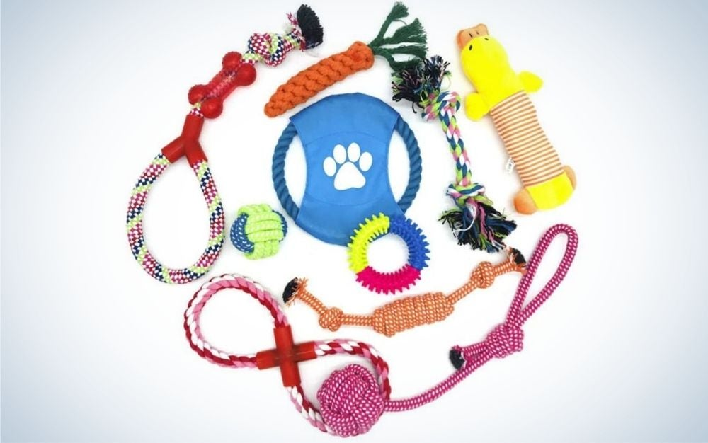 Different colored dog toys from front.