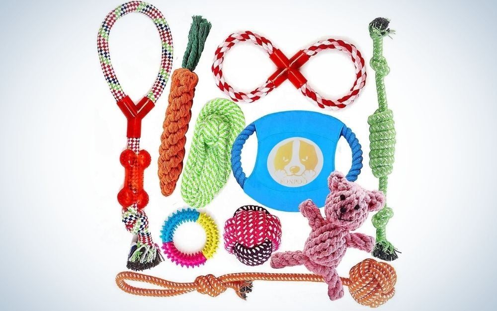 Gathered dog toys with different colors from front.