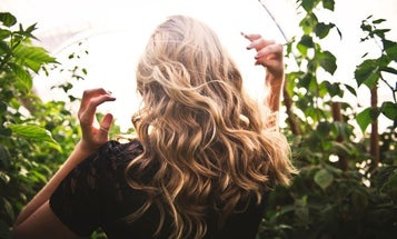 Best Hair Curler to Get a Great Hair Day Every Day